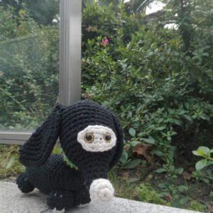 perrito negro punto